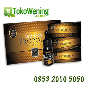 Propolis Brazilian Moment ( 1 Box )